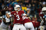 January 24, 2016: Carolina Panthers vs Arizona Cardinals. Carson Palmer