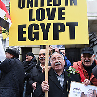 Sisi supporter counters protest against Muslim Brotherhood's