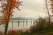 Washington, Newport. Pilings reflected in the calm water with  autumn colors and rising fog over the Pend Oreille River. PLEASE CONTACT US FOR DIGITAL DOWNLOAD AND PRICING.