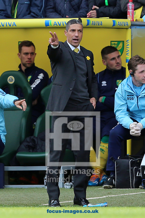 Manager of Norwich City, Chris Hughton during the Barclays Premier League match against Sunderland at Carrow Road, Norwich<br /> Picture by Richard Calver/Focus Images Ltd +447792 981244<br /> 22/03/2014