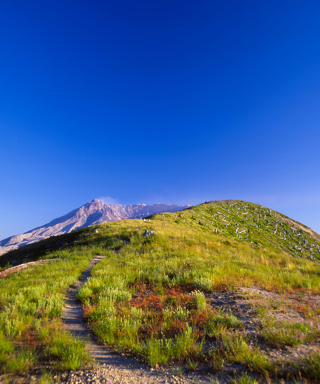 Mt. St. Helens from Windy Ridge Area, Mt. St. Helens National Volcanic Monument, Washington, US
