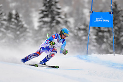 Downhill, KRAKO Jakub Guide: BROZMAN Branislav, B2, SVK at the WPAS_2019 Alpine Skiing World Championships, Kranjska Gora, Slovenia