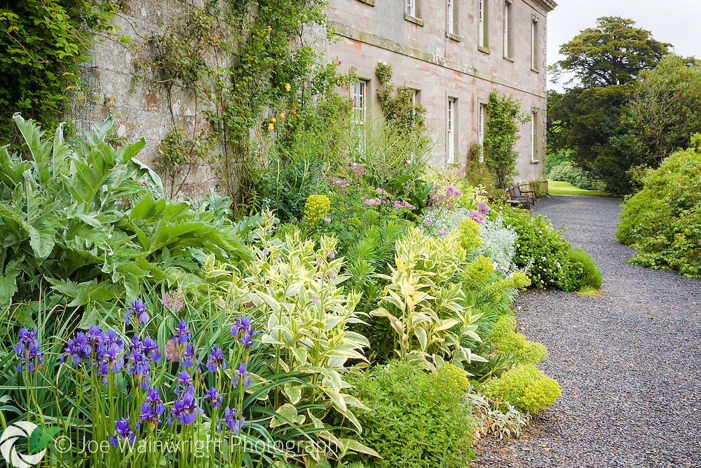 Plants spill across the path in the Terrace Garden at Dalemain, Cumbria.