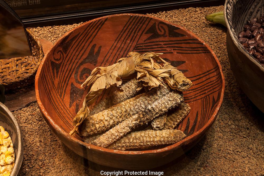 Ancestral Puebloan pot, corn cobs, Grand Canyon, AZ
