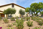 Rose Garden at Mission Santa Ines