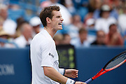 CINCINNATI, OH - AUGUST 22: Andy Murray of Great Britain yells after winning a point during his match with Roger Federer of Switzerland during day six of the Western & Southern Financial Group Masters on August 22, 2009 at the Lindner Family Tennis Center in Cincinnati, Ohio. Federer defeated Murray 6-2, 7-6. (Photo by Joe Robbins)