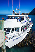 Island Packers boat at Scorpion Cove, Santa Cruz Island, Channel Islands National Park, California USA