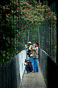 Chinese Family Enjoys The Views Of The Upper Reaches Of The Rainforest From One Of The Arenal Hanging Bridges In La Fortuna, Costa Rica.