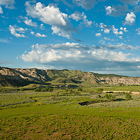 Spring green grass and fair weather clouds Gist Bottom, Upper Missouri RIver Breaks National Monument, Montana, Wild and Scenic Missouri River, russel country, montana, usa, upper missouri river breaks national monument, russell