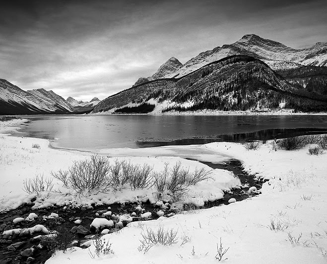 Spurling Creek flowing in the Spray Lakes Reservoir in winter
