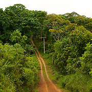 piste qui me?ne a? la Fazenda Pedra do Sabia/Track which leads to Fazenda Pedra do Sabia