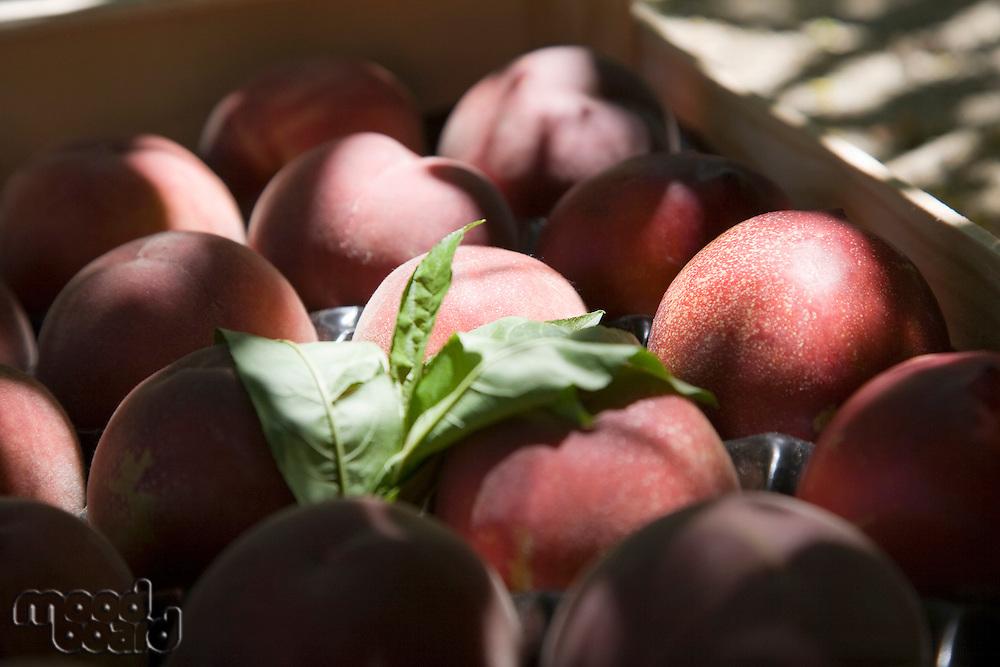 Peaches in crate
