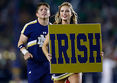 NCAA Football - Notre Dame Fighting Irish vs Stanford Cardinal - South Bend, IN