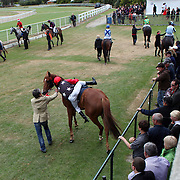 A jockey mounts his horse in the mounting yard during a day at the Races at the Gore Race Meeting, Gore, Southland, New Zealand. 18th December 2011. Photo Tim Clayton