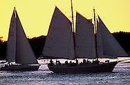 Sailboats, Southhold Bay, Shelter Island, Southold, New York, USA,
