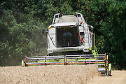 Wheat harvest near Marchtrenk, Austria.