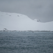 Cape Shirreff, South Shetland Islands. Marine techs ferry a NOAA research team and 5 months worth of supplies