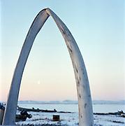 Whale bones in Kivalina, Alaska. 2007