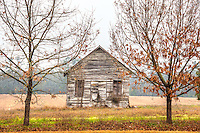 Abandoned house/shack off highway 301 somewhere in Georgia.