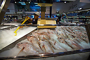 Pyrmont. Fish Market. Shops getting ready in the morning.