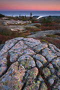 The cracked and weathered granite, lichen and fall colors of Cadillac Mountain are lit by the last rays of light over the eastern seaboard, Acadia National Park, Maine, USA