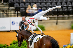 Drewell Jannis, GER, Feliciano 44, Lunger Hansen Lars<br /> World Equestrian Games - Tryon 2018<br /> © Hippo Foto - Stefan Lafrenz<br /> 18/09/18