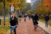 In Delft rijden fietsers over het terrein van de Technische Universiteit.<br /> <br /> In Delft cyclist ride at the campus of the TU.