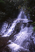 Laurel Falls; waterfalls in woods; Great Smoky Mountains National Park; TN & NC; summer+