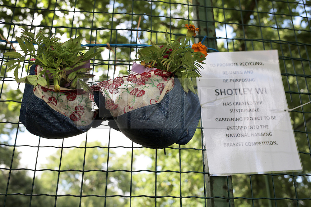 © Under licence to London News Pictures. 21/08/2016. A bra turned into a hanging basket by the ladies of Shotley WI, on display at Shotley Church Hall at Snods Edge in Northumberland, UK. Members of Shotley Womens Institute have re-cycled bras to make hanging baskets for the national WI hanging basket competition, which will be judged this coming bank holiday weekend. The bras are made up of some of their own and some donated by local women. Photo Credit: Stuart Boulton/LNP