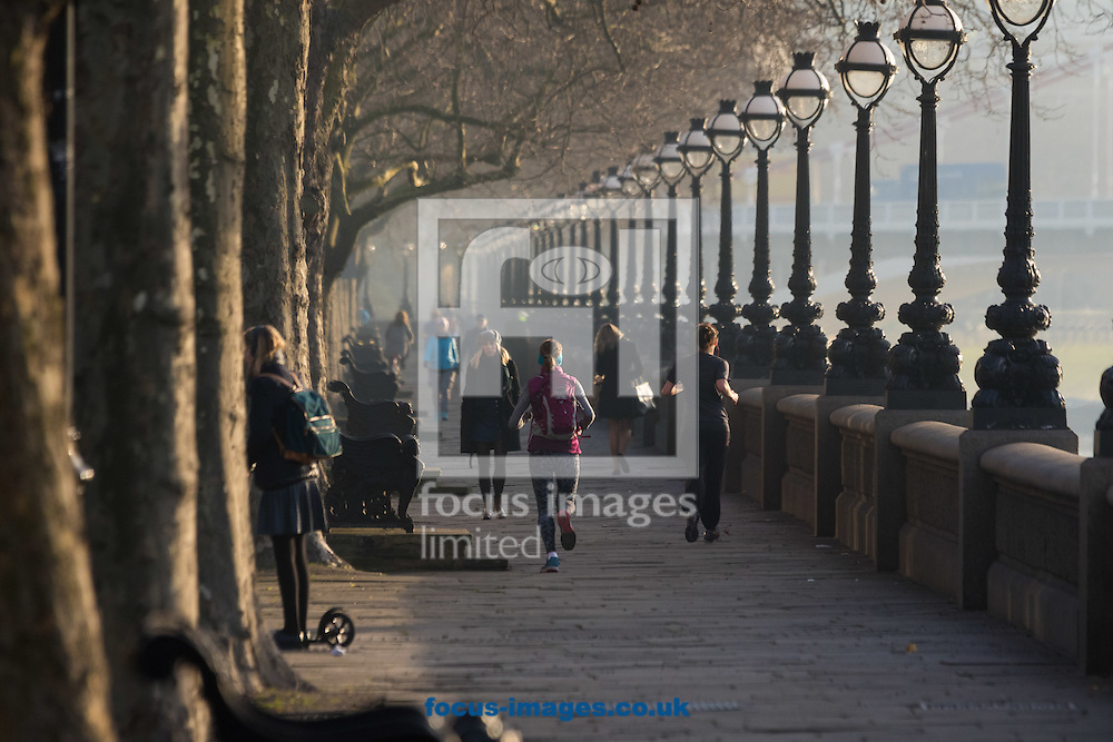 Runners enjoy the early morning sunshine as they jog beside the River Thames at Cheyne Walk, London <br /> Picture by Paul Davey/Focus Images Ltd +447966 016296<br /> 24/02/2016