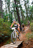 Oak Valley ( Elgin / Grabouw ), SOUTH AFRICA - Karl Platt rides through the single track at High Rising during stage six , 6 , of the Absa Cape Epic Mountain Bike Stage Race in Oak Valley ( Elgin / Grabouw ) on the 27 March 2009 in the Western Cape, South Africa..Photo by Karin Schermbrucker /SPORTZPICS