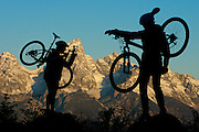 Mountain Bikers - Grand Teton National Park - Jackson - Wyoming - USA