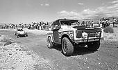 78 Mint trucks