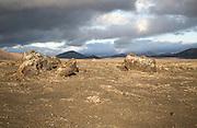 Volcanic landscape Parque Nacional de Timanfaya, national park, Lanzarote, Canary Islands, Spain
