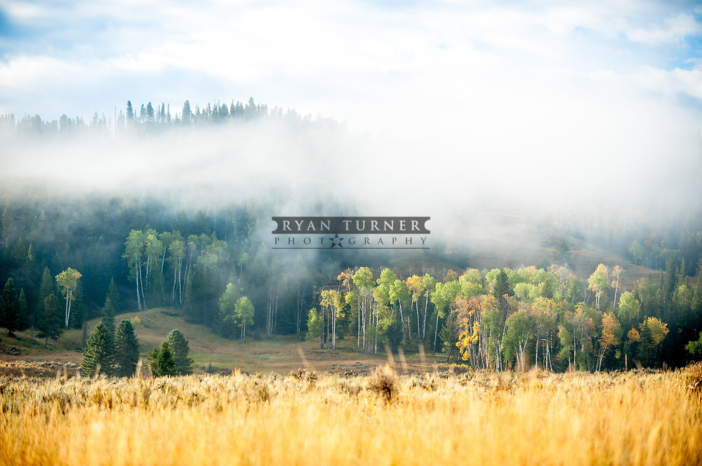 Fall in Big Sky, Montana.  Limited Edition - 75