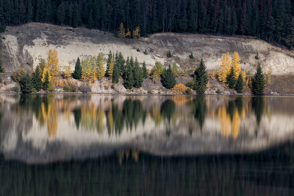 Autumn colors adorn the shoreline of Yellowhead Lake in British Columbia.