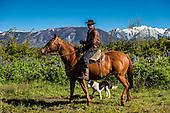 Day 06. Esquel - Bariloche