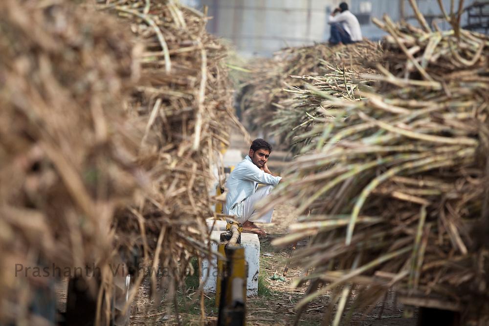 Farmers wait in line outside a sugar factory, selling their sugarcane produce in Modi Nagar, in Uttarpradesh, India, on Friday, November 12, 2010. Photographer: Prashanth Vishwanathan/Bloomberg News