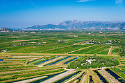 Fertile farmland along the Dalmatian Coast, Croatia