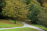 Autumn along the footpath to Dunstaffnage Castle, near Oban, Scotland <br />