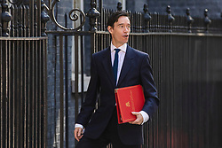 © Licensed to London News Pictures. 23/07/2019. London, UK. Secretary of State for International Development Rory Stewart arrives on Downing Street for the final Cabinet meeting under Prime Minister Theresa May. The result of the Conservative Party leadership contest will be announced this morning. Photo credit: Rob Pinney/LNP