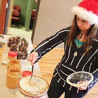 Environmental Educator Theresa Celia prepares components to make pine cone bird feeders Saturday December 20, 2014 during Nature Holiday Creations at Halyburton Park in Wilmington, N.C. (Jason A. Frizzelle)