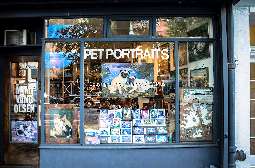 Pet Portraits Store. Soho, NYC