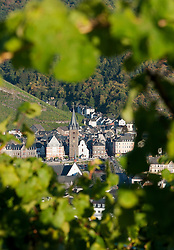 Afternoon view of Bernkastel-Kues village from vineyard on River Mosel in Mosel valley in Germany