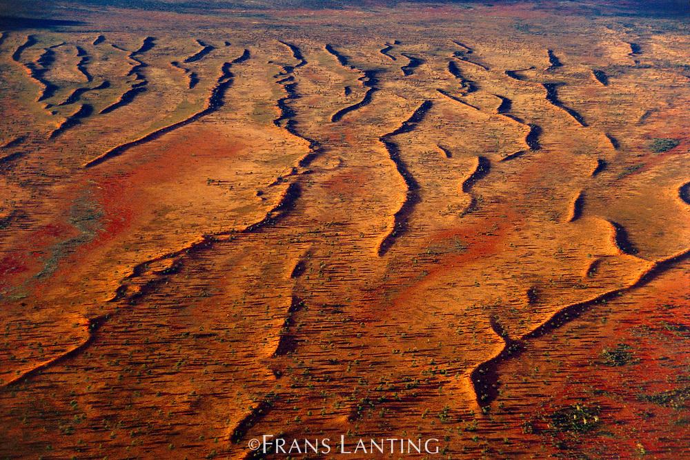 Sand dunes, Central Australia