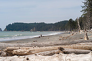 People enjoy Rialto Beach, Olympic National Park, Washington, USA.
