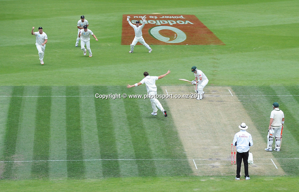 Tim Southee celebrates the dismissal of Brad Haddin, caught by Ross Taylor at first slip on Day 4 of the second cricket test between Australia and New Zealand Black Caps at Bellerive Oval in Hobart, Monday 12 December 2011. Photo: Andrew Cornaga/Photosport.co.nz