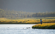 Two Japanese fly fisherman spot and stock bank feeding rainbows on the famed Railroad Ranch.