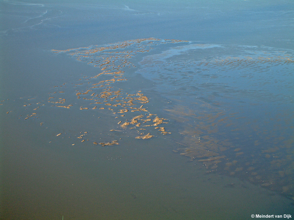 Luchtfoto van mosselbanken in de Waddenzee tussen Ameland en de Friese kust.<br /> Aerial picture of mussel beds (mussel banks) in the Dutch Wadden Sea.