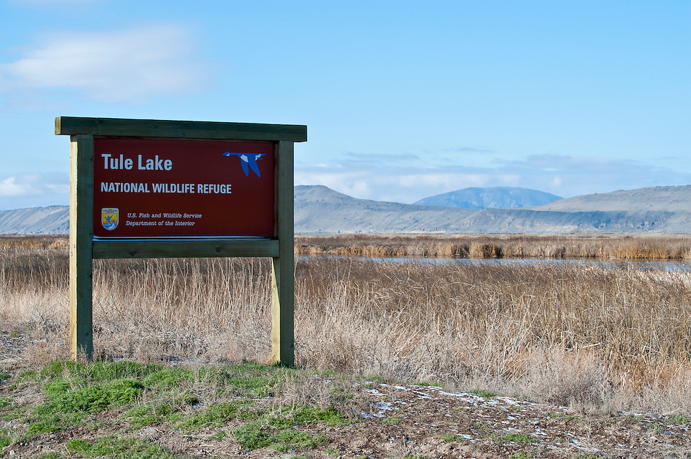 Tule Lake National Wildlife Refuge, Klamath Basin wetlands, California